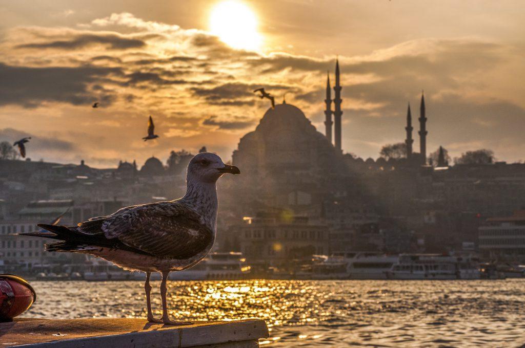 سرمایه گذاری و خرید ملک ترکیه